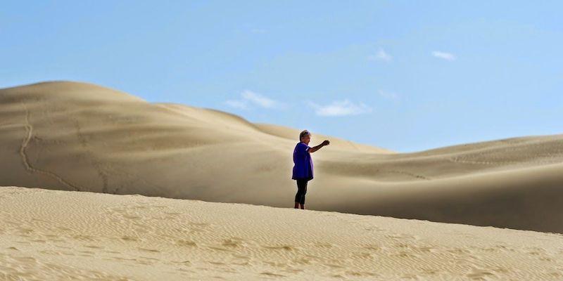 auf den Sanddünen im hohen Norden