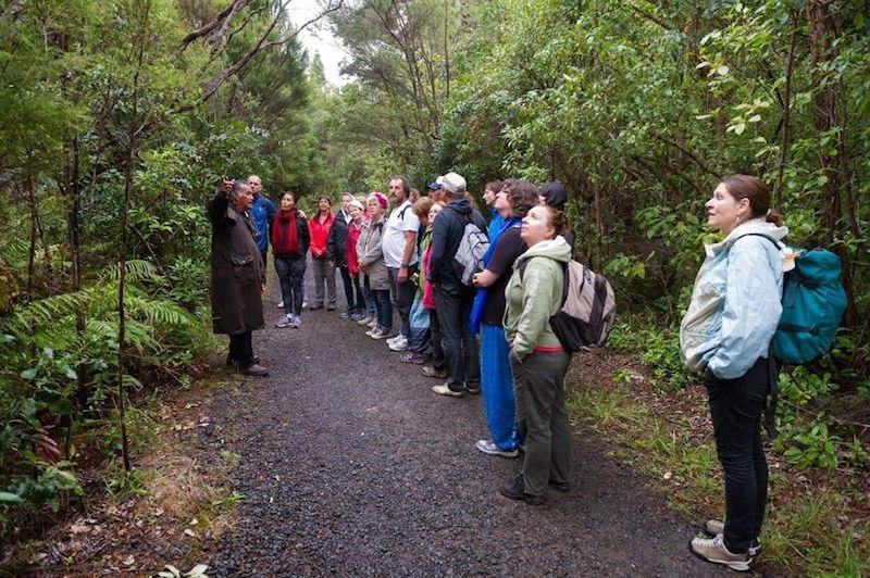 hoch im Norden gings mit Wiremu, Robs Onkel, in den Kauri Wald - Waipoua Forest