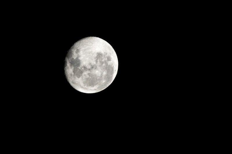 Der Mond steht in Neuseeland wie alles andere Kopf. Ergo war er/sie in diesem Fall abnehmend.