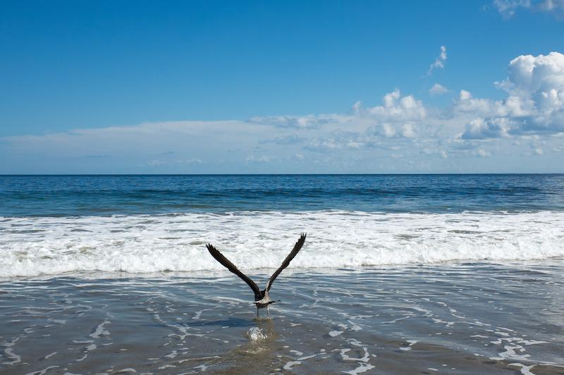 und zum Meer