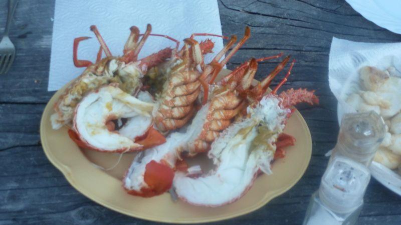 Crayfish - Endstadium