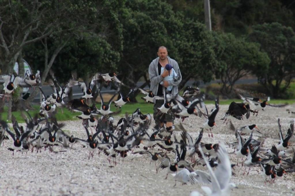 mit Māui beim Vögelvertreiben am Strand